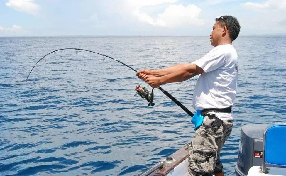 Рыбалка троллинг – все о ловле рыбы троллингом от а до я