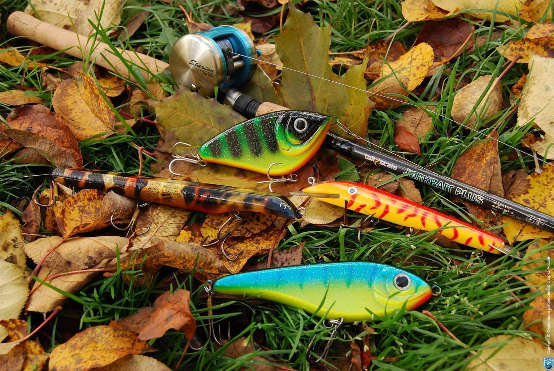 10 лучших магазинов на aliexpress для любителей рыбалки