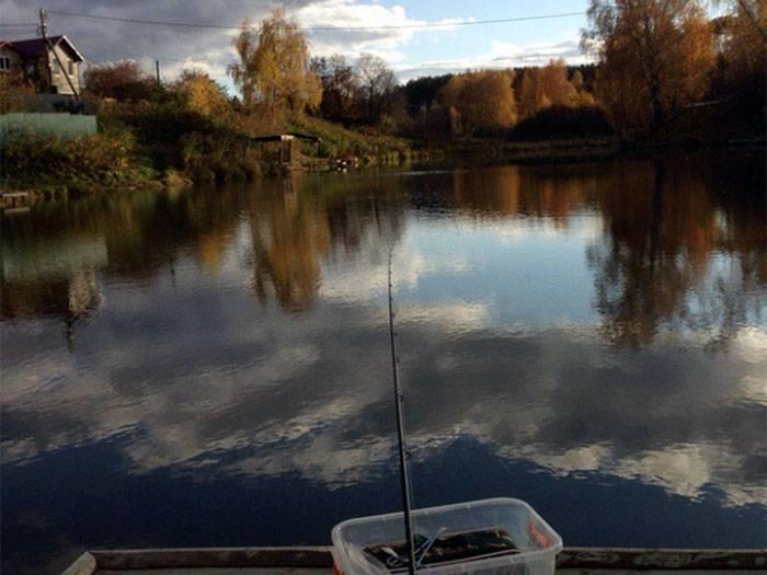 Платная и бесплатная рыбалка в подольском районе