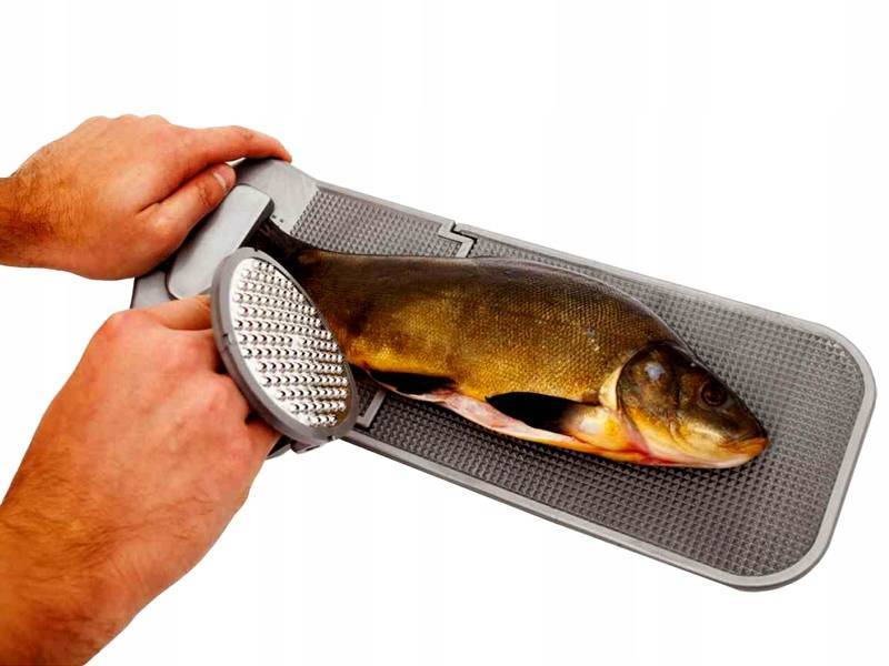Очистка рыбы от чешуи и костей — как правильно и быстро почистить рыбу