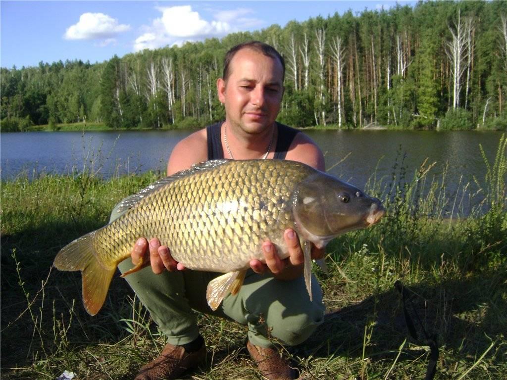Рыбалка в ульяновской области | (73) карта рыболовных мест