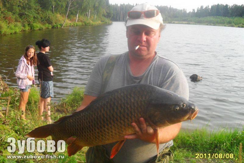 Платная рыбалка в ленинградской области – цены и водоемы