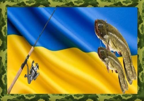 Рыбалка в украине: где ловить сома в июле
