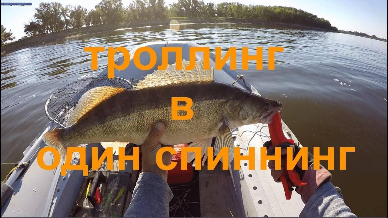Троллинговая рыбалка: снасти и советы по ловле щуки