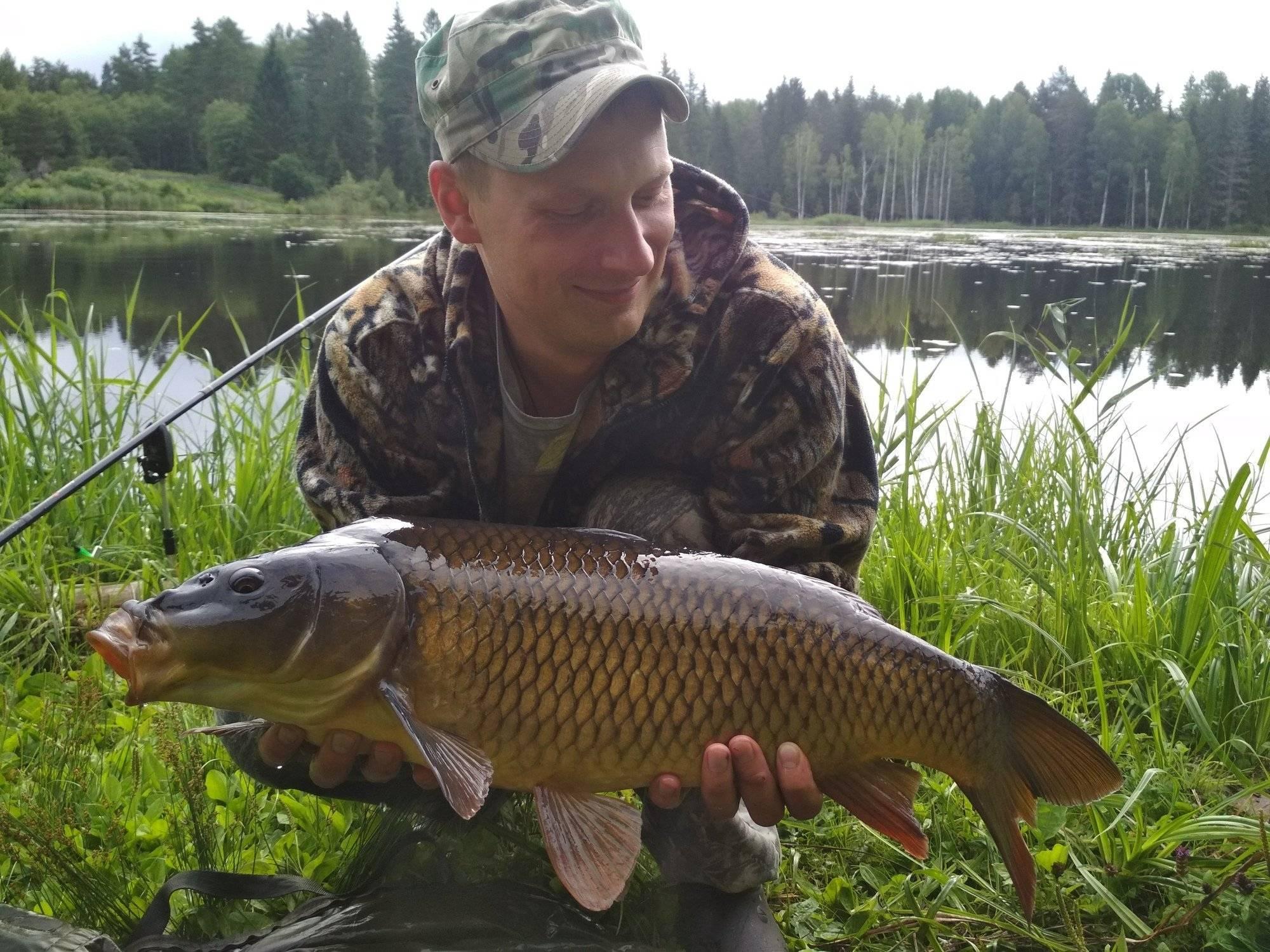 Платная рыбалка в московской области: рыболовные базы, водоемы и туры москвы и области