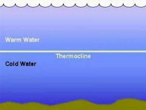 Термоклин, влияние термоклина на глубину ловли и рыбалку