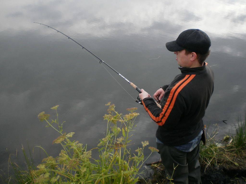 Выбор спиннинга для рыбалки — обзор важных параметров и лучших моделей