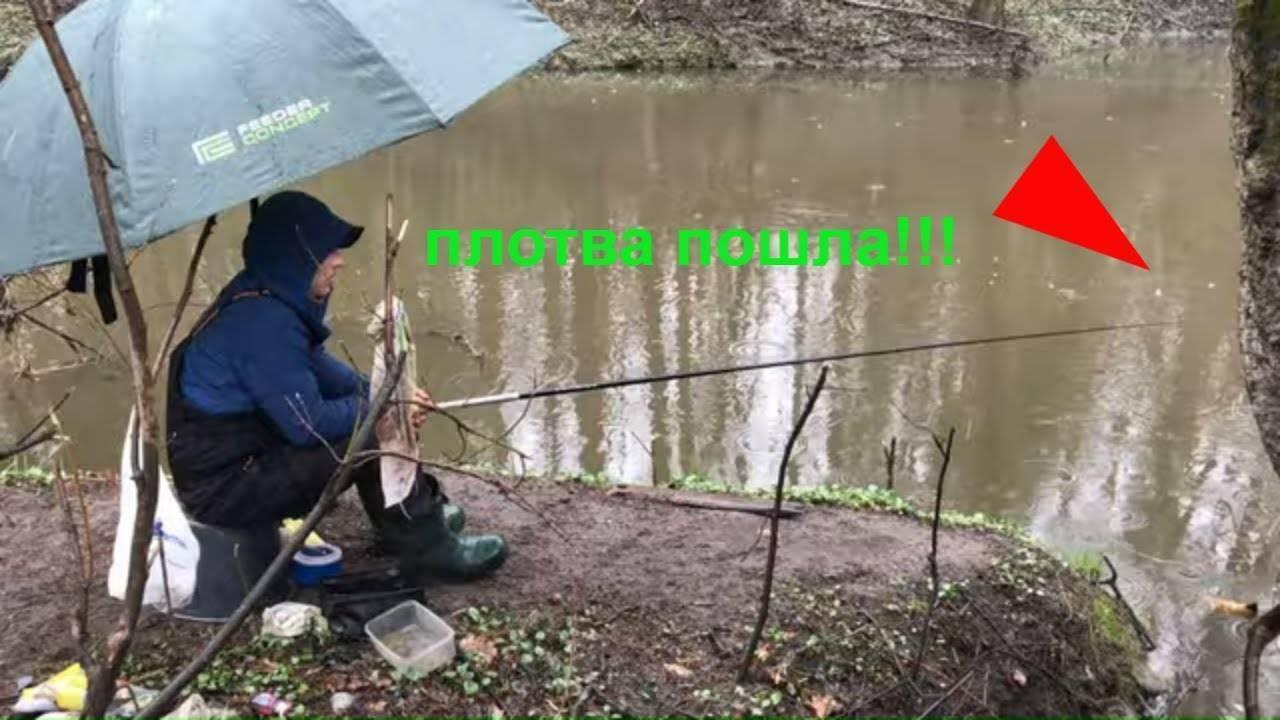 Ловля плотвы весной на поплавочную удочку (видео)