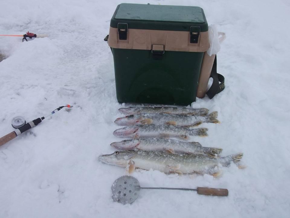 Снасти и принадлежности для зимней рыбалки