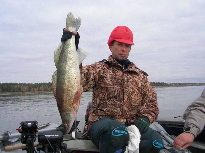 Рыбалка в новосибирске и области: где лучшие места?