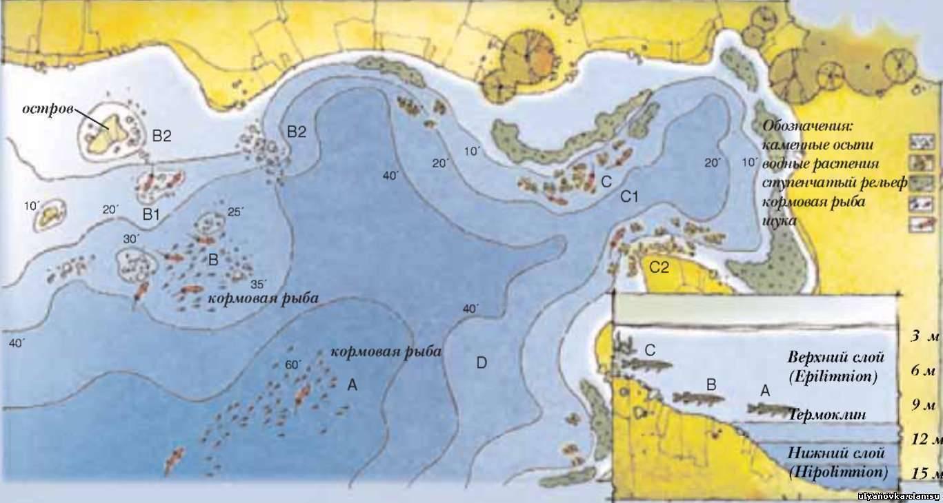 Зимняя, весенняя, летняя и осенняя рыбалка в подмосковье. карта платных и бесплатных водоемов в москве и области