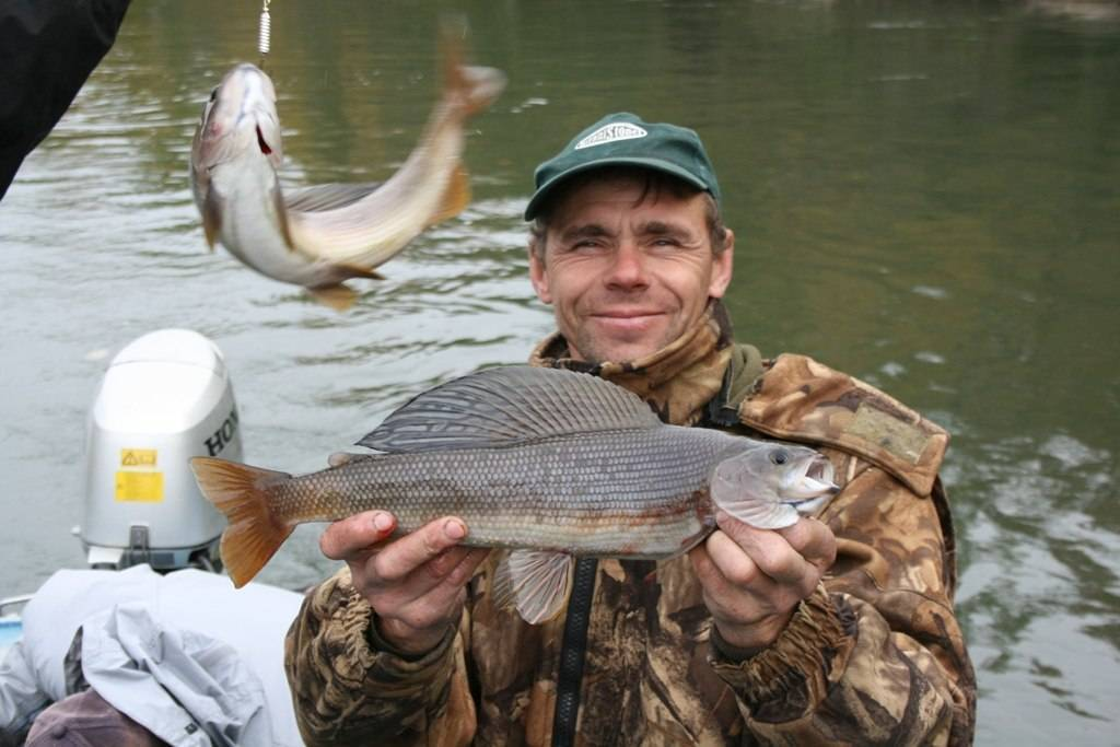 15 лучших рыболовных мест краснодарского края. платные и бесплатные | животный мир