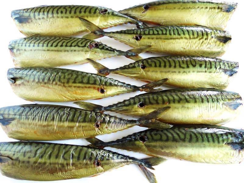 "Скумбрия ""рыбка золотая"""