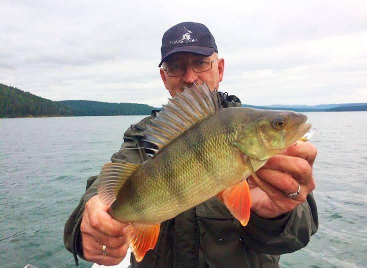 Рыбалка в омске и омской области — какая рыба водится, лучшие рыбные места