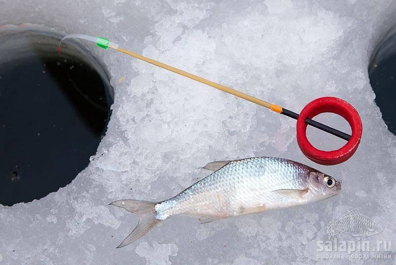 Ловля уклейки зимой ~ как ловить уклейку на мормышку со льда