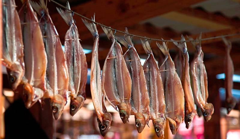 Как правильно вялить и сушить рыбу в домашних условиях: советы рыбаков, которые помогут не допустить ошибок