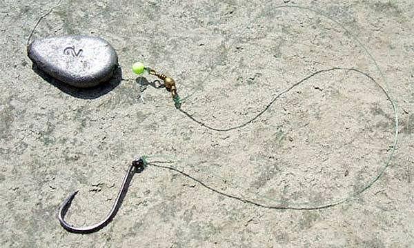 Ловля сома с берега