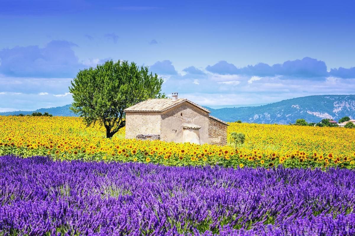 Прованс - альпы - лазурный берег, регион - франция