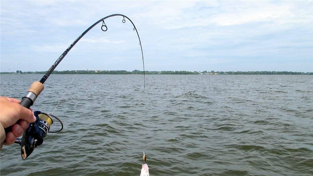 Спиннинг для начинающих: как ловить рыбу, уроки по рыбалке, видео ловли