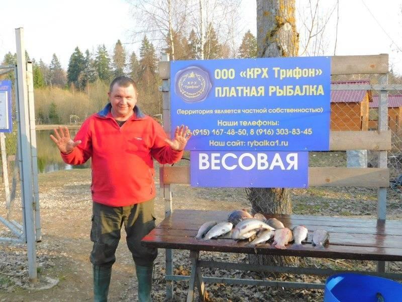 Куда поехать на рыбалку в псковской области и пскове и запрет 2019
