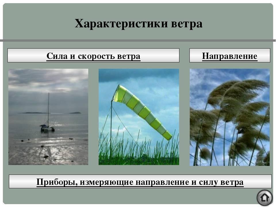 Когда рыба не клюет, а при каком ветре хороший клев? погодные условия для удачной ловли