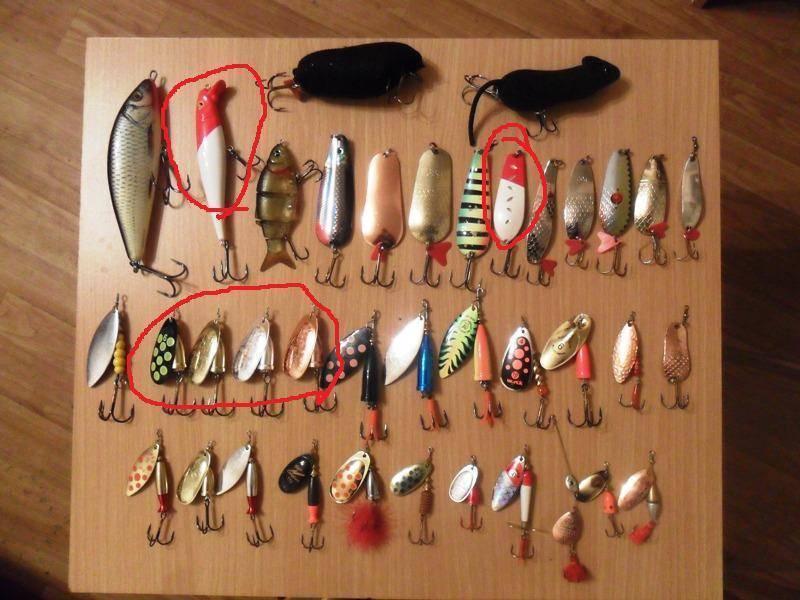 Рыбалка на тайменя: способы ловли, выбор снастей и приманок