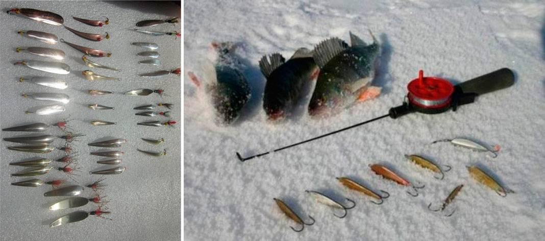 Блесна на окуня: особенности зимней рыбалки, уловистые приманки, тонкости блеснения для начинающих